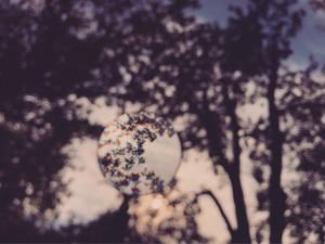 dreamingofmidsummer (204) - ∅ 5.00