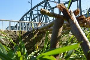277. Platz | Einzel | Maximilian G. (234) | Brücken bauen