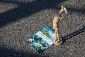 228. Platz | Einzel | Nepomuk Mohl (330) | Das Leben ist ein Spiel