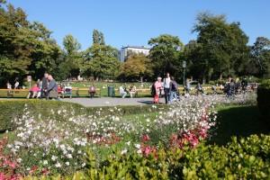 50. Place | Einzel | Armin L. (354) | in the Stadtpark
