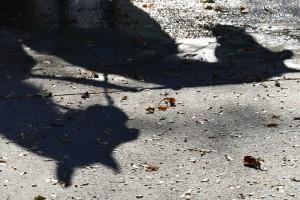 269. Place | Einzel | Gerd K. (37) | light and shadow