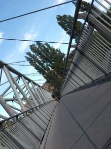 89. Platz | Einzel | Katharina S. (400) | Brücken bauen