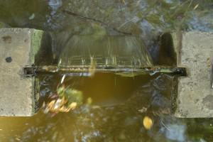 184. Place | Einzel | Dewam M. (415) | building bridges