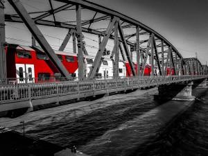 5. Place | Handy | Sonia M. (416) | building bridges