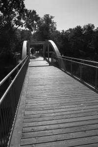 40. Place | Einzel | Berhard E. (43) | building bridges
