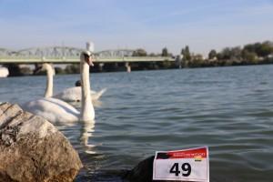 29. Place - Becksteiner (49)
