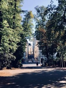 81. Place | Handy | SimoneZant (536) | in the Stadtpark