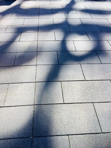 81. Place | Handy | SimoneZant (536) | light and shadow