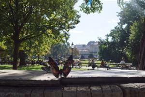 96. Place | Kreativ | A & M Ennagi (57) | in the Stadtpark
