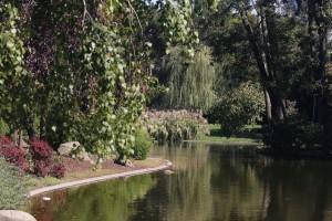 164. Platz | Einzel | Thomas M. (580) | im Stadtpark
