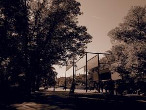 228. Place | Einzel | Stefan P. (599) | in the Stadtpark