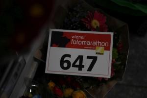 255. Platz - Sofie K (647)