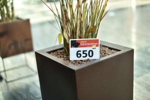 114. Place - Die Gewinner (650)