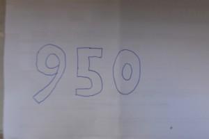 28. Place - Felix P. (950)