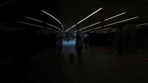 80. Place | Kreativ | 1niceteam (106) | Pursuit of Light