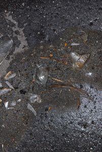 20. Place | Jugend | Anna & Line (166) | fragments