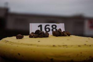 198. Platz - Reinhard G. (168)