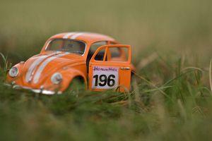 249. Platz - Philipp Vanek (196)