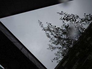 95. Place | Einzel | Marion K. (2) | Pursuit of Light