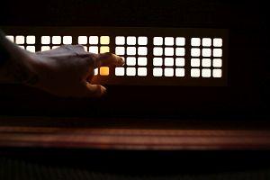 223. Place | Einzel | Lucia L. (242) | Pursuit of Light