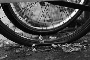 1. Place | Einzel | Eva (255) | noncircular-not at ease