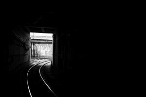 1. Place | Einzel | Eva (255) | Pursuit of Light
