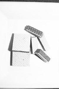61. Platz | Einzel | rodo (262) | Bruchstücke