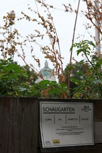 140. Place | Einzel | quovadit (277) | around-across Karlsplatz