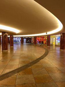 65. Platz | Handy | Lama (284) | rund um den Karlsplatz