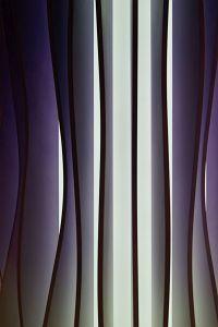 116. Place | Einzel | Tanja S. (300) | Pursuit of Light