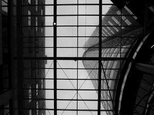 38. Place | Einzel | Robin L. (346) | my Millennium experience