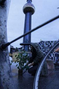 80. Platz | Kreativ | SonneMondundSterne (347) | Wien baut für die Zukunft