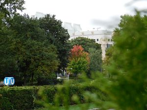 170. Place - Moaz Ismail (400)