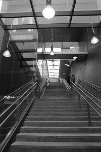 95. Place | Einzel | Barbara K. (429) | Pursuit of Light