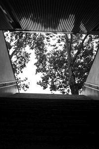 149. Place - Nina Hladil (475)