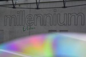 216. Platz | Einzel | knochenwald (513) | Mein Millennium Erlebnis