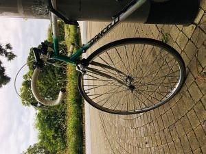 58. Platz | Handy | Katharina C. (536) | klimaneutral unterwegs