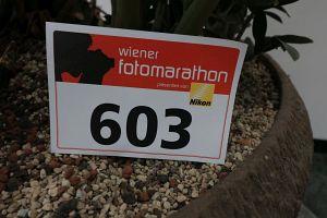 170. Platz - Christian Salfellner (603)