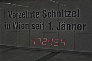 244. Place | Einzel | Markus P. (63) | crazy/disarranged