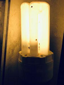 67. Place | Handy | ValentinaB (637) | Pursuit of Light