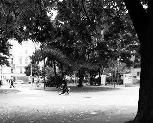 102. Place - Tabea K. (641)
