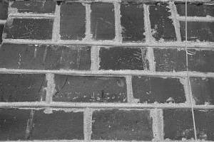 182. Place | Einzel | Manuela K. (872) | crazy/disarranged