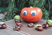 19. Place | Einzel | Birgit K. (1089) | autumn and its colours